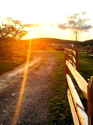 A trail on Weed Orchards with a wood post fence and a setting sun.