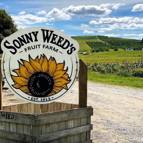Sonny Weeds Sign