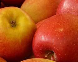 pyo-apples