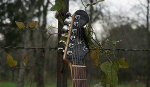 A guitar handle against grape vines