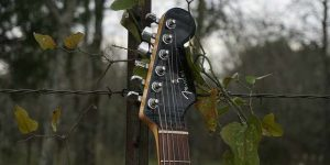 A guitar handle against grape vines